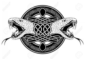 13571427 the image of head of snake and celtic patterns